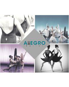 Experiencia a Eleccion Entre Clase De Ballet Personalizada Base Grupal